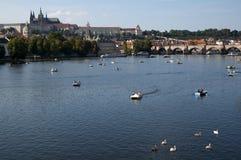 Boats on the river Vltava. PRAGUE, CZECH REPUBLIC- SEPTEMBER 12, 2015: boats on the river Vltava Royalty Free Stock Photos