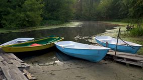 Boats on riverbank. Wooden boats moored on riverbank in forest at sunrise stock video