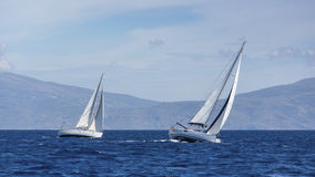 Boats in sailing regatta. Yacht sails with cloudless sky. Royalty Free Stock Photos