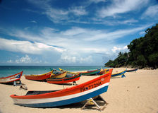 Boats Scene. Colorful boats along the beach Royalty Free Stock Photography