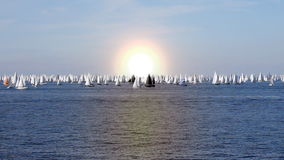 Boats in the sea stock footage