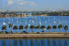 Boats on the sea. Miami day,Florida , USA. Royalty Free Stock Photo