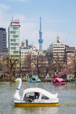 Boats on Shinobazu Pond at Ueno Park. TOKYO, JAPAN - MARCH 29: Boats on Shinobazu Pond at Ueno Park on March 29, 2016 in Tokyo, Japan. Ueno Park is the most Stock Photo