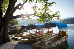 Boats at the shore of Bled Lake in Slovenia Royalty Free Stock Images