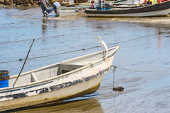 Boats on the shore in El Rompio Panama Royalty Free Stock Photo