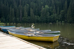Boats. Some boats on Red lake in Transilvanya, Romania stock photos