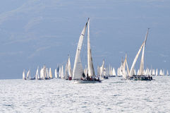 Boats at the start of Trofeo Gorla 2012 Stock Photos