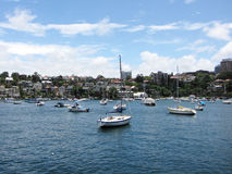 Boats on a sunny day in Sydney. Surrounded by houses Stock Images