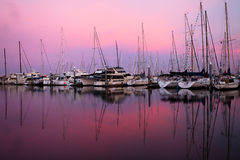 Boats in sunrise. Sunrise in marina in Seattle royalty free stock image
