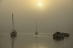 Boats Sunrise in the Fog. Sun rising in the fog with boats and ducks Royalty Free Stock Images