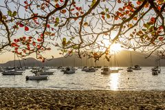 Boats at sunset in calm beach of Ilhabela Brazil royalty free stock photo