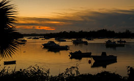 Boats at sunset. Sillouetted Boats in a Natural Harbour at Sunset Royalty Free Stock Photo