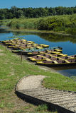Boats in the swamp Stock Photography