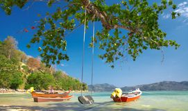 Boats  and  swing. View of nice wood ocean swing under the big tree on shore Stock Photo