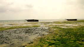 Boats Tanzania beach stock video