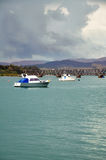 Boats in Tauranga. Taken in Tauranga New Zealand Stock Photography