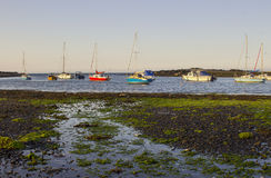 Boats on their moorings beside Cockle Island in the natural tidal harbour at Groomsport in Co Down,Northern Ireland with  Belfast Royalty Free Stock Image