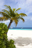 Boats on tropical white sand beach Royalty Free Stock Photography