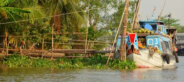Boats in the valley of the Mekong river in Vietnam Stock Images