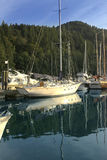 Boats in vancouver islands royalty free stock photos