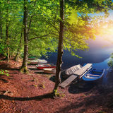 Boats are in the woods near the water. Royalty Free Stock Photos