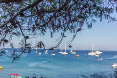 Boats and yachts anchored close to the sea shore in blue lagoon Stock Images