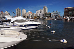 Boats and yachts in the bay. In sunny day Stock Photography