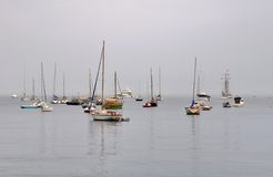 Boats and yachts moored Royalty Free Stock Image