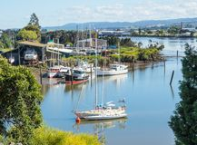 Boats in the Tamar River, Launceston royalty free stock images
