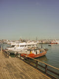Boats and Yachts in Punta del Este Port Stock Photos