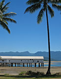 Boatshed and Palm trees Stock Images