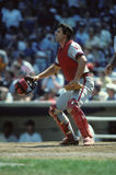 Bob Boone Royalty Free Stock Images