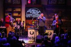Boba演奏实况音乐的爵士乐队在克拉科夫爵士乐在Jaszczury俱乐部的所有Souls'天节日 克拉科夫 免版税图库摄影