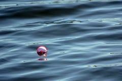 Bobber de pêche flottant dans l'eau Photos libres de droits