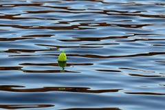 Bobber en el agua Fotos de archivo