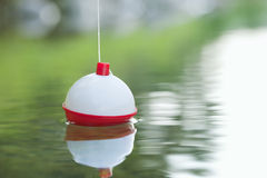Bobber floating on water with ripples. A red and white bobber floats on water with ripples Stock Photos