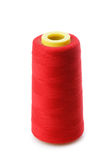 Bobbin with red thread Stock Images