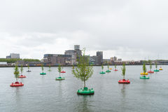 Bobbing forest in rotterdam Stock Images