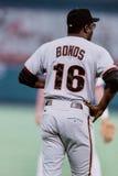 Bobby Bonds San Francisco Giants Arkivbilder