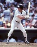 Bobby Murcer New York Yankees fotografía de archivo libre de regalías