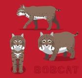 Bobcat Cartoon Vector Illustration royaltyfri illustrationer