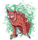 Bobcat on a green background.  Royalty Free Stock Images