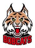 Bobcat head mascot. Vector of bobcat head mascot Royalty Free Stock Photos