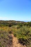 Bobcat Hiking Trail in spiaggia di Newport fotografia stock