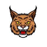 Bobcat lynx head muzzle vector mascot icon Royalty Free Stock Photos