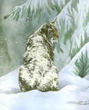 Bobcat under the snow (vertical)- watercolour. Lynx covered with snow - Artwork made with watercolour stock illustration