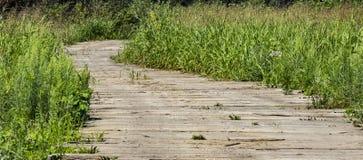 Bobina de madera del camino a través de un campo Fotos de archivo libres de regalías