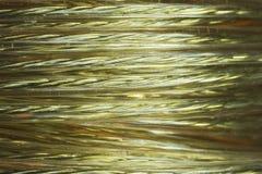 Bobina de oro del alambre Imágenes de archivo libres de regalías