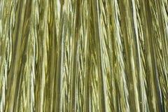 Bobina de oro del alambre Imagenes de archivo