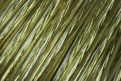 Bobina de oro del alambre Imagen de archivo